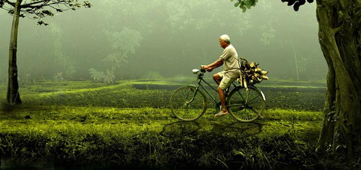 Bike Riding For Seniors
