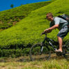 Mountain Biking for Beginners